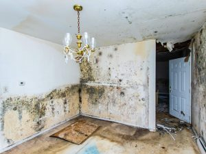 home that needs extensive repairs